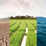 Temperature Rising: The future of managing 'unprecedented' climate risk